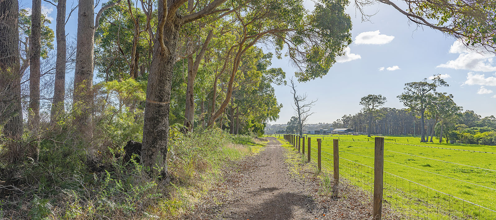 Reserve on Redgate Wardandi Trail